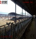 Flujo de aire fuerte Exaust ventilador para vaca