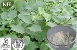 Чисто естественная выдержка Cuspidatum Polygonum - Resveratrol 98% HPLC