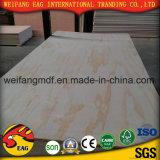 El roble rojo/Ash/Beech/nogal/Maple/teca teca de Birmania/madera contrachapada de fantasía (2,2 mm-18mm)