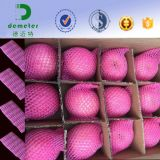 Heiße Verkäufe im Amerika-Markt-Nahrungsmittelgrad-Schaumkunststoff-Hülsen-Netz, zum der Frucht zu schützen