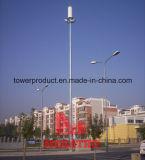 Telecomのためのガラス繊維Street Light Antenna Cover