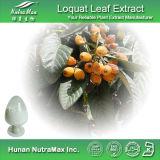 Экстракт листьев Loquat органические кислоты 98% (CAS №: 77-52-1)