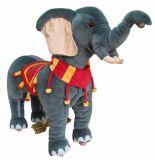 象(A-001)の乗車