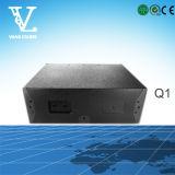 Q1 Double 10inch 2-Way линейный массив Динамик для Звуковая система