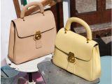 2017 signora di cuoio Delicate Designer Handbags (BDX-161013)