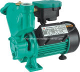 세륨을%s 가진 Wedo 1awzb125k 각자 Priming Peripheral Water Pump