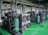 Hochtemperatur 2 paralleler Refcomp Schrauben-Verdichter-kondensierendes Gerät (KRC-2H-150)