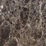 Lastre & mattonelle di marmo scure di Emperador