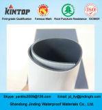 Freigelegte Belüftung-wasserdichte Membrane verwendet auf Dach