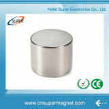 Magnete di NdFeB del cilindro del boro del ferro del neodimio della terra rara