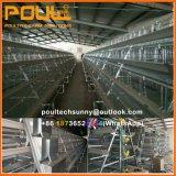 Atype Cage de la couche de poulet avec buveur automatique et système de convoyeur