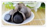 Здоровая еда с черным чесноком
