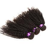 Mink Malaio Cabelo Curly 4 Pacotes 8A Grade Virgin Cabelo humano não processado Deep Wave Queen Hair Products Malásia Virgin Hair