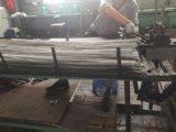 SUS314, cinghia di SUS304mesh della fornace
