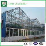 De commerciële Serre van het Glas van het Frame van het Aluminium Holle Aangemaakte