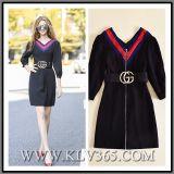 Frauen, die Form-Herbst-Schwarzes V-Stutzen Reißverschluss-Partei-Kleid kleiden