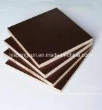 4X8 Тополь нескольких слоев ламинированной пленки коричневого цвета черного цвета, с которыми сталкиваются фанеры