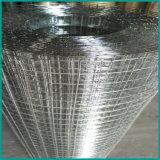 Rete metallica saldata ricoperta PVC verde di /Holland della rete metallica di colore