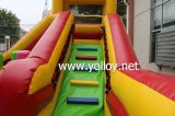 High quality Inflatable Water Slide for Kids party