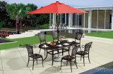 屋外/庭/テラスの藤または鋳造アルミの椅子HS3181c