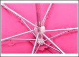 EVA 예 포켓 소형 5 Foldable 우산