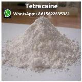 99 % Phenacetine / Phenacet / Fenacetina порошок