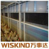 Diseño de la estructura de acero de la luz de la casa de aves de corral con ISO/SGS