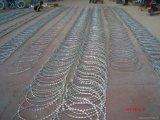 熱い浸された電流を通されたアコーディオン式かみそりの有刺鉄線