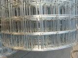 Квадратное отверстие Hot-Dipped оцинкованной сварной проволочной сетки для строительства и отсека для жестких дисков