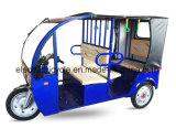 アジアの最も熱い電気三輪車、乗客のTrikeの三輪車