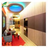 Revêtement en bois décoratif UV-Résistant de mur de panneau des graines HPL