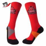 Fabrik-Sports kundenspezifische Mann-Frauen-Baumwolle Terry Socken mit Senkfußeinlage