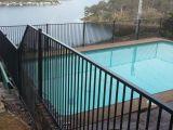 PPGの粉の上塗を施してある黒いプールの庭の囲うこと