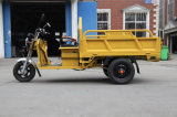China Barato Tuk Tuk pequena carga elétrica triciclo para venda