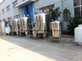 Linea di produzione automatica dell'imballaggio del sistema di trattamento delle acque in bottiglia