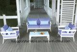 Софа ротанга Wicker обедая мебель отдыха напольная (TG-064)