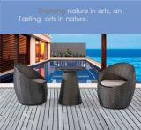 정원 등나무 의자를 가진 옥외 가구 탁자