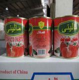 Inserimento di pomodoro inscatolato qualità eccellente fresca del raccolto 2018