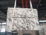 Marmo di bianco cinese, lastra di marmo di Arabascatta per le mattonelle di pavimento, mattonelle della parete, decorazione della villa