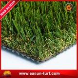 مرج جديد يرتّب تمويه عشب لأنّ حديقة