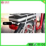 Batteria elettrica ragionevole della bici di prezzi 36V con BMS