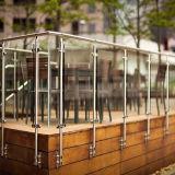 Modern Ontwerp 304 de OpenluchtPrijs van het Traliewerk van het Glas van de Leuning van het Roestvrij staal van Metaal 316