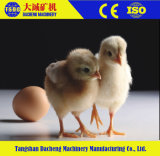 Автоматическая клетка цыпленка батареи курочки для цыпленоков цыпленка/младенца дня старых