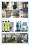 2000L/H de Machine van de Installatie van de Reiniging van de Filter van de Omgekeerde Osmose van de Behandeling van het Drinkwater van de omgekeerde Osmose