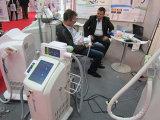 Hochwertige Schönheits-Salon-verwendete Karosserie, die Maschine Cryolipolyse fettes einfrierendes Coolsculpting mit FDA-gebilligtem abnimmt