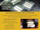 수영풀을%s 방수 옥외 점화 320watt LED 플러드 전등 설비