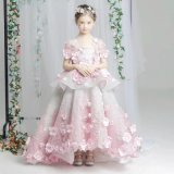 Um encantador little Princess Dress