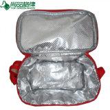 Водоустойчивым мешок охладителя обеда пикника двойника грелки изолированный отсеком