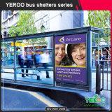 Publicidad del abrigo modificado para requisitos particulares de la parada de omnibus con el rectángulo ligero