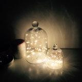 10m 100 LED LED de luz de la cadena de arroz para la decoración de vacaciones